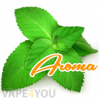 Classic Menthol Aroma